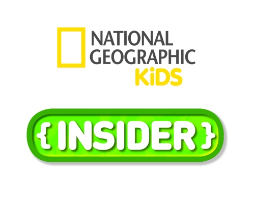 final-insider-logo-hi-res